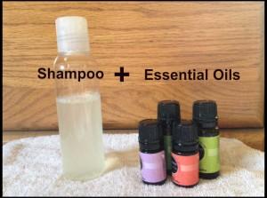 shampoo + essential oils